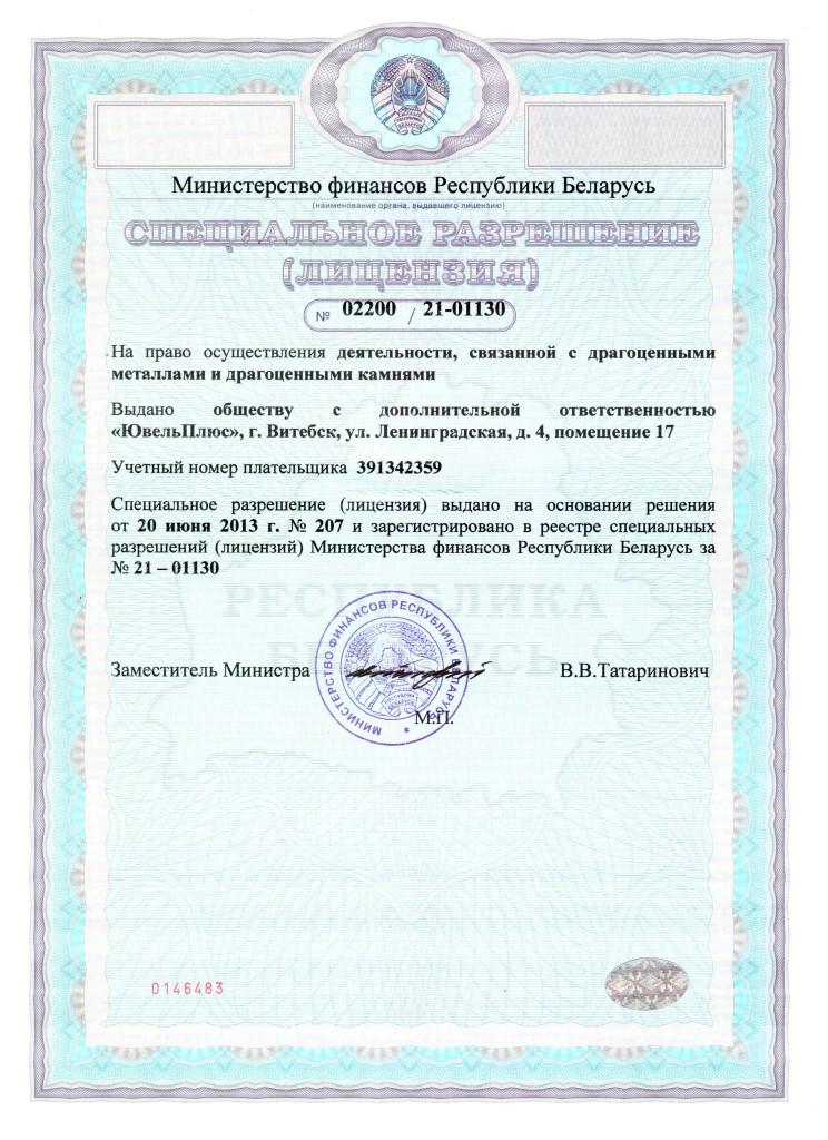 Лицензия 1-1